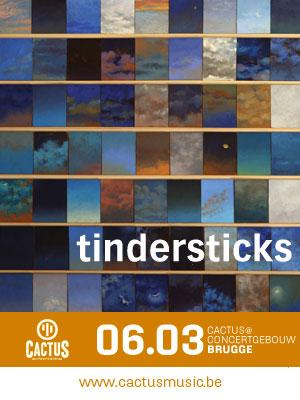 Webbanner_tindersticks