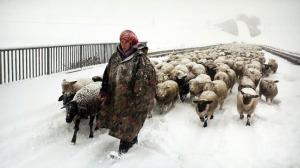 berlin_winter_nomad_hiver_nomade