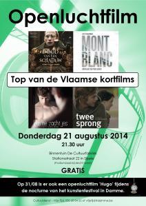 affiche openluchtfilm 2014